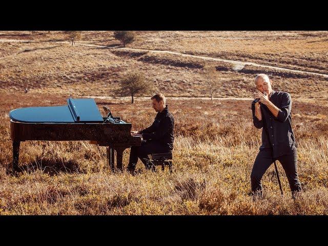 Wild Wild Son (feat. Sam Martin) - ARMIN VAN BUUREN