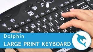 Meet the Dolphin Large Print Keyboard