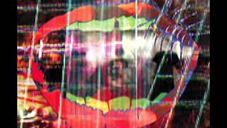 Animal Collective - Moonjock