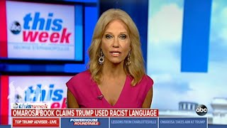 Kellyanne Conway struggles naming a black White House staffer