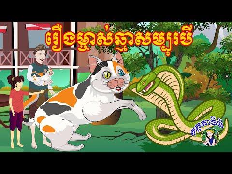 រឿងម្ចាស់ឆ្មាសម្បុរបី- រឿងនិទានខ្មែរ Bedtime Stories Tokata TV- Khmer Fairy Tales 2020