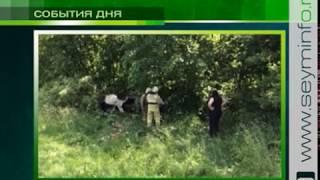 Разыскиваются свидетели аварии под Курском