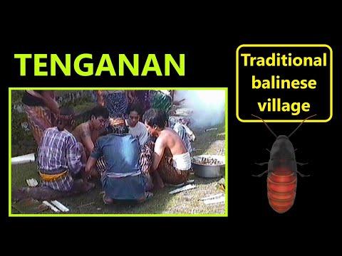 Tenganan -the traditional Bali-Aga Village-