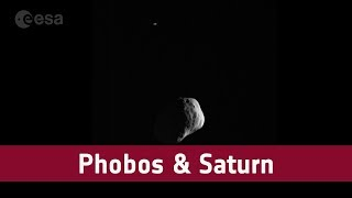 As luas marcianas e Saturno à distância