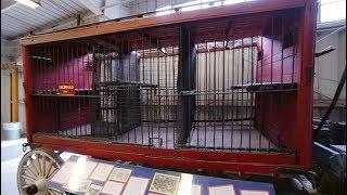 #884 TRAVEL TOWN MUSEUM - Jordan The Lion Daily Travel Vlog (1/7/19)