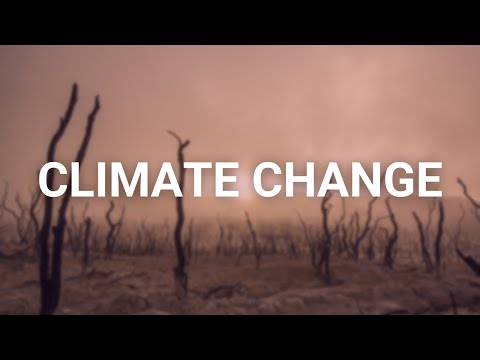 UN: CLIMATE CHANGES, IMPACTS
