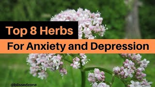 Top 8 Herbs For Anxiety and Depression