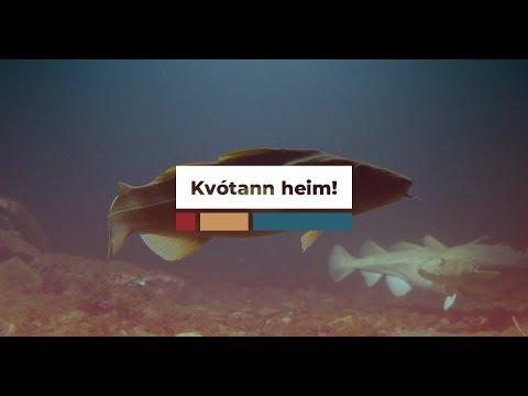 Fiskmarkaðir: Lífæð smærri fyrirtækja