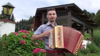 Michael Sattler - Walzer für Harmonika