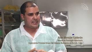 Cuba impulsa investigaciones biotecnológicas y farmacéuticas