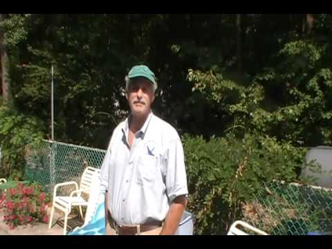 Fiberglass vs. Concrete Pools: Hear What an Owner of Both Pools Thinks!
