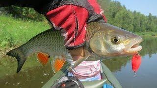 Ай лаклы рыбалка