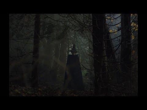 Гретель и Гензель (2020) — трейлер | GRETEL & HANSEL  Teaser Trailer 2020