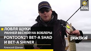Воблеры pontoon 21 bet-a-shad