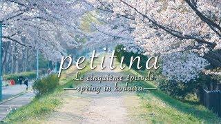 こだいら観光まちづくり協会 petitina Le Épisode Cinquième ー spring in kodaira ー