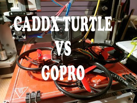 ET125 CineWhoop - Maiden - Gopro vs Turtle - Mamba F405 FC