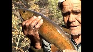 Russia. Autumn fishing in the mountains of Baikal region. Catching the Lenok on the Turokcha.