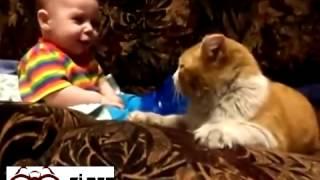 Sevimli bebek ve kedi dostluğu