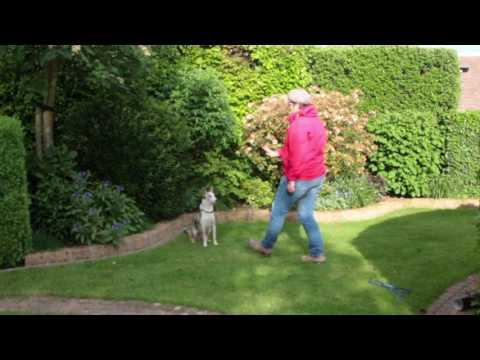 Stufe zervikale Osteoarthritis Instabilität
