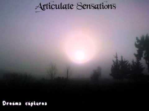 Articulate Sensations - The Rain of the Fate II