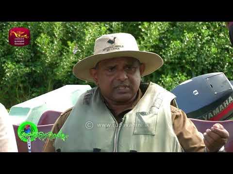 Sobadhara - සොබාධාරා | Season 2 | Episode - 26 | 2018-07-20 | Rupavahini Documentary