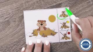 Le jeu de la marmotte