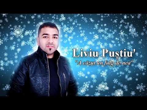 Liviu Pustiu – A cazut un fulg de nea [Cover] Video