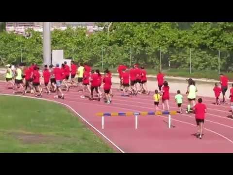 Vídeo de Sortida
