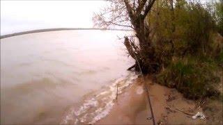Рыбалка в ельцовка алтайского края село