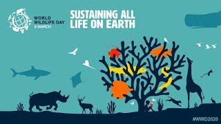 3 mars : journée mondiale de la vie sauvage