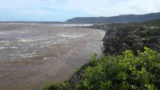preview picture of video 'Hermanus Lagoon Opening'