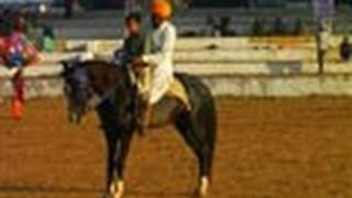 Horse Training Ground, Pushkar