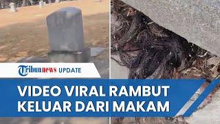 Viral Video Rambut Keluar dari Kuburan Tua Berusia 100 Tahun, Begini Penampakannya