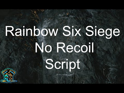 there are a lot of players with recoil macros :: Tom