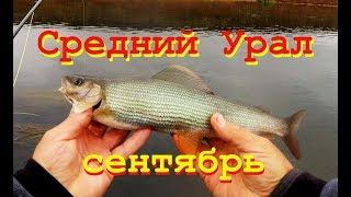 Река иргина пермского края рыбалка