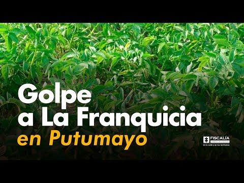 Fiscal Francisco Barbosa: Golpe a La Franquicia en Putumayo