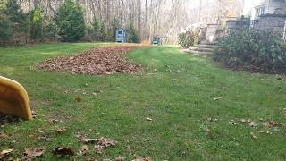 Bob Cat Xrz Pro Rs Mulching Leaves By Supreme Services Lawn Care