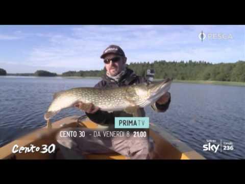 La previsione di pesca a Nefteyugansk