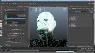 Maya Rigging 2: Bind Skin and Paint Skin Weights Tools.