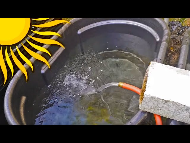 Summer Tubbin 100 gallon rubbermaid stock tanks Easy DIY Fish Ponds. Tropical Fish Outside