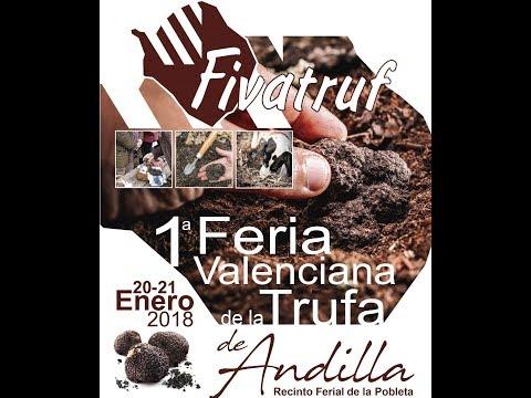 1ª FERIA DE LA TRUFA DE ANDILLA 2018
