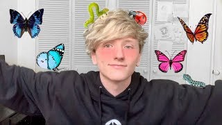 """Video thumbnail of """"Cavetown cover soft boy edition"""""""