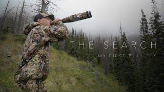 THE SEARCH: My First Bull Elk!! (a DIY Colorado OTC Archery Elk Hunt)