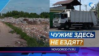 Жители Любытина утверждают, что на местный полигон свозят мусор из Ленинградской области