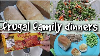 Real Life Large Family Dinners on a Budget | What's for Dinner?