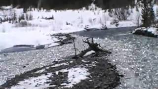 River by David Allan Coe