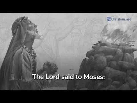 Leviticus 5:14 – 6:7: Israelites Guilt Offering | Bible Stories