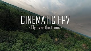 Tree Surfing - Cinematic FPV (uncuted) 4K true 21:9