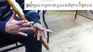 Veysel Karani (Notalı)