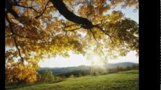 Loreena McKennitt - Down by the Sally Gardens